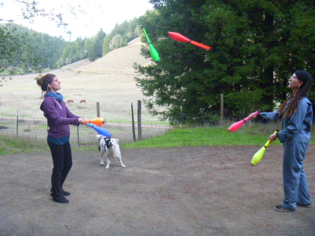 Juggling brak at the farm -California, USA